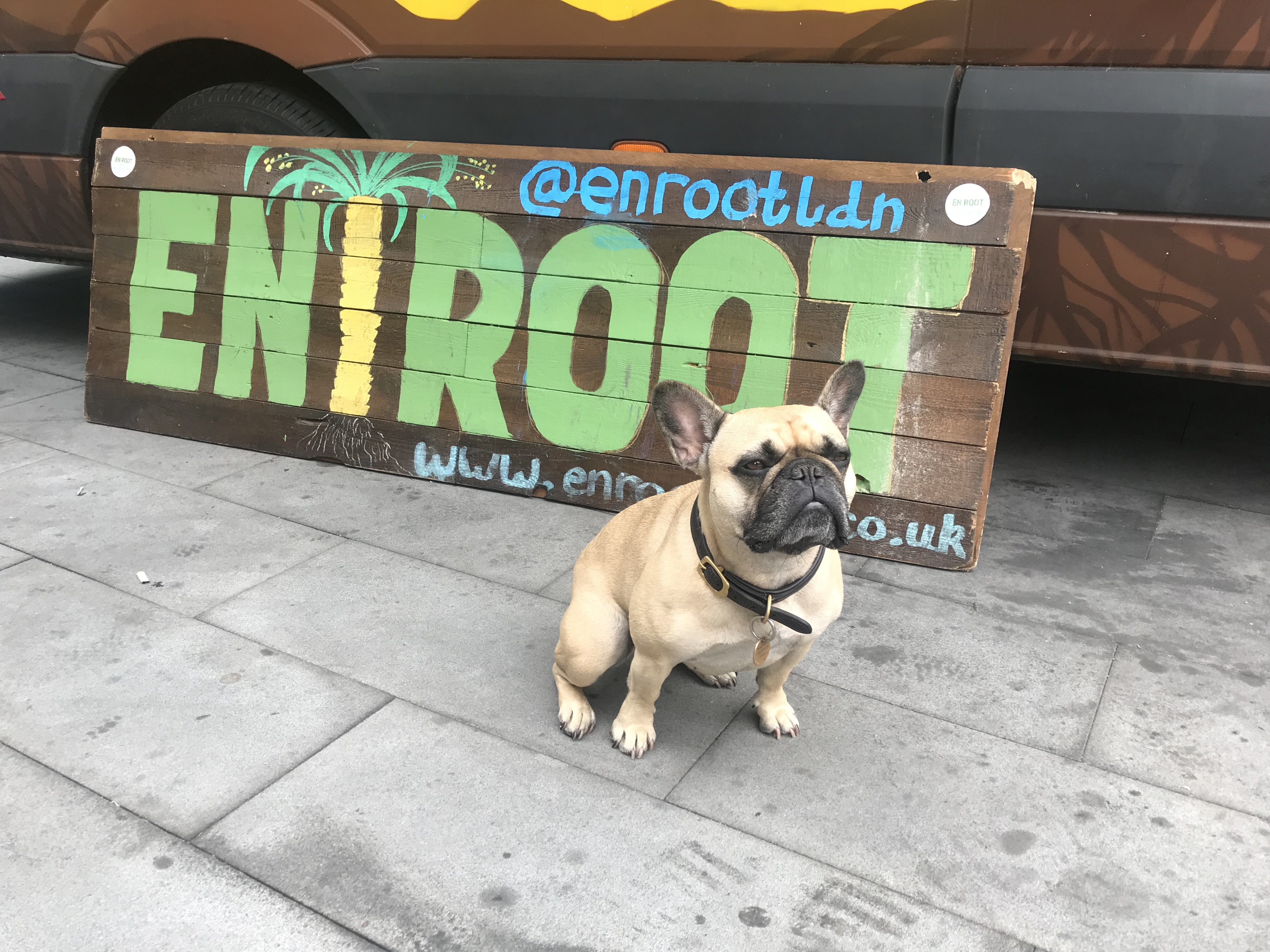 Elphie The Frenchie & En Root
